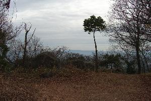 城山2.JPG